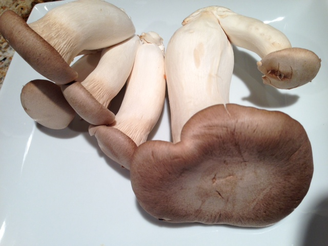 King Mushrooms