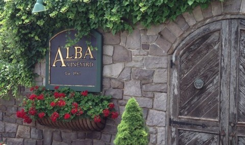 Alba Vineyard – New Jersey Wines Anyone?