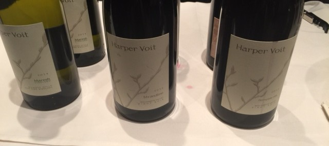 Harper Voit – Obsessively Crafted Willamette Valley Wines